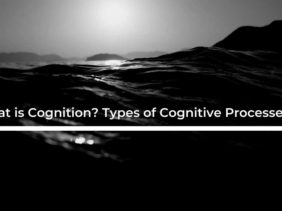 What is Cognition? Types of Cognitive Processes.