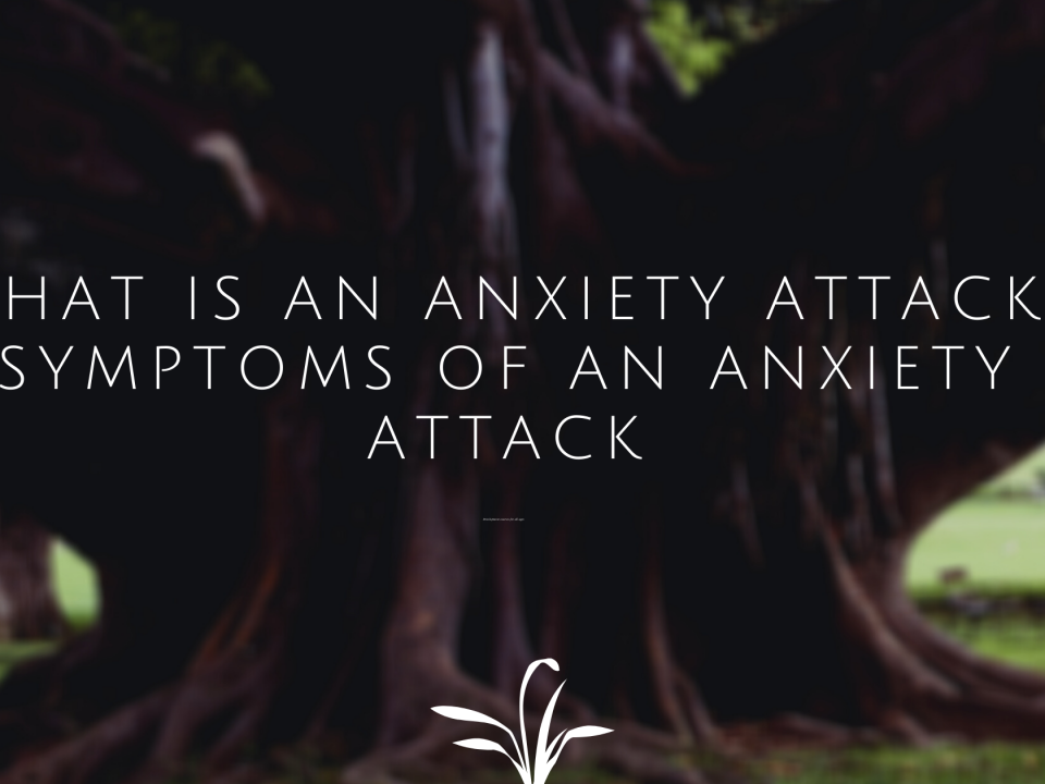 What is an anxiety attack? Symptoms Of An Anxiety Attack.